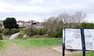 A Walk Along Whitchurch Way